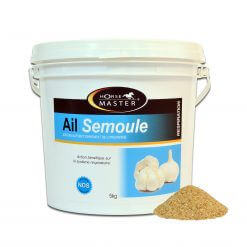 Hvidløg - Ail Semoule 5 kg, hvidløgsgranulat